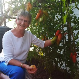 Adventures in Powell River: Peppers, Peaches, Pigs, and Chickens on the Edible Garden Tour