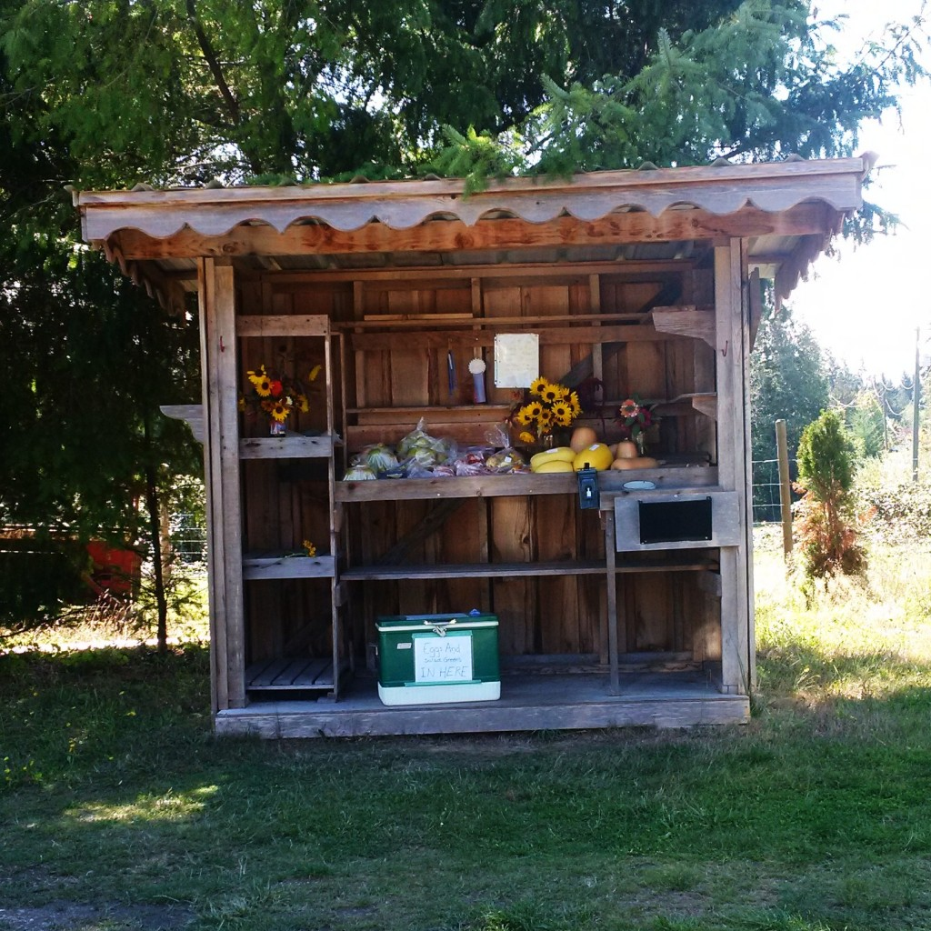 Roadside stands are a popular choice for local produce, eggs, and flowers.