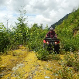 Powell River: Paradise on Four Wheels
