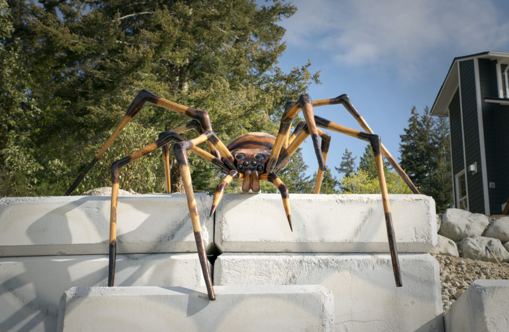 The spider / Photo by Leah Laurie
