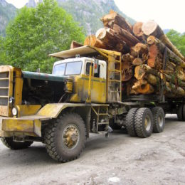 Learn a little bit about the logging industry in Powell River
