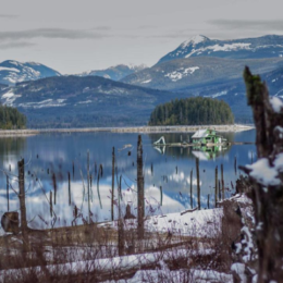 9 Photos That Show Winter in Powell River Ain't So Bad