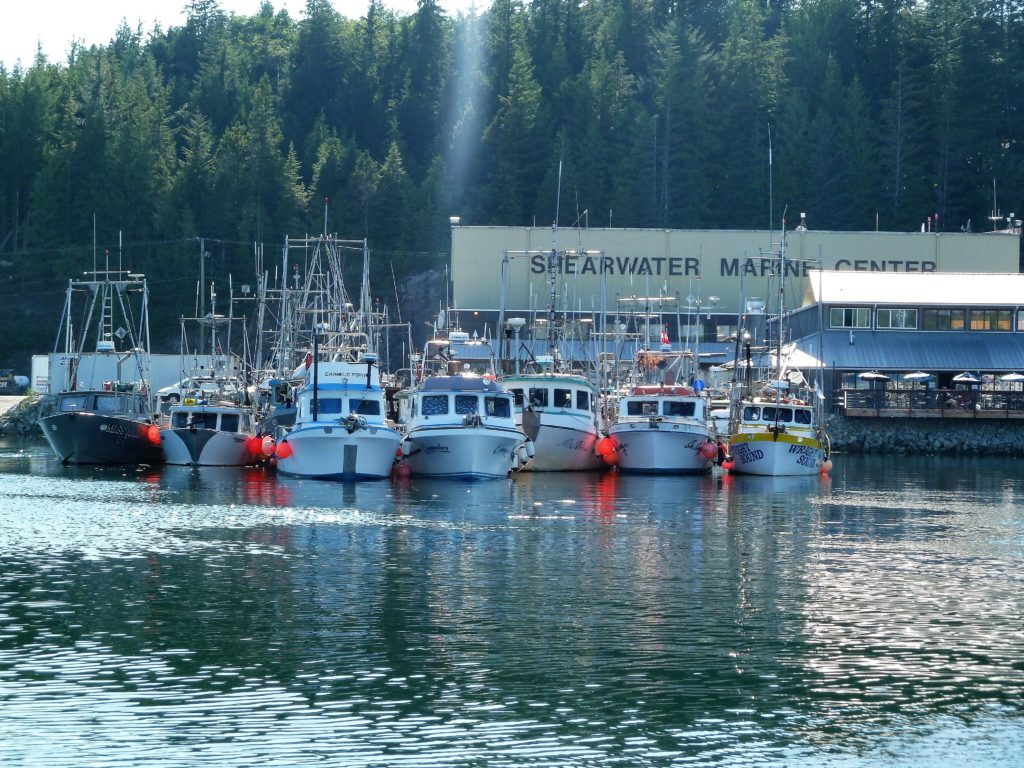 Shearwater Harbour